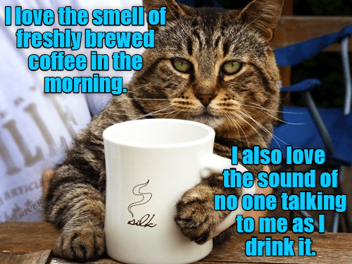 smell no one talking morning coffee sound love caption - 9030721280
