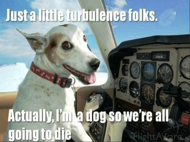 Funny meme of a dog flying an airplane.