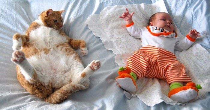 Funny picture of cat and baby lying down the same way on the bed.