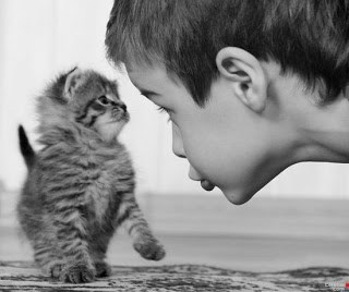 Cute picture of a kitten and a little kid making strong eye contact.