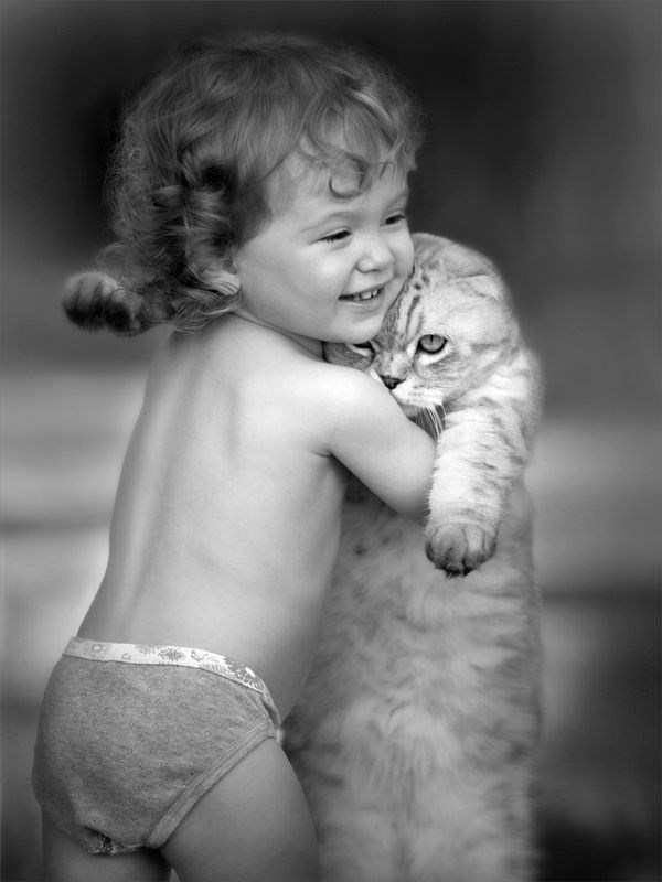 Cute pic of cat getting a hug from a child.