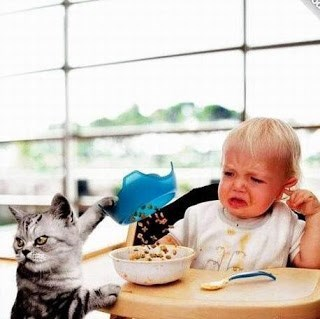 Funny cat picture in which the cat seems to dumping out his food into the kid's bowl.