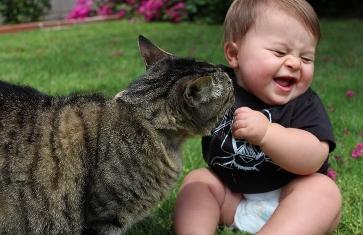 funny picture of a kid and a cat playing nicely outdoors on green grass.