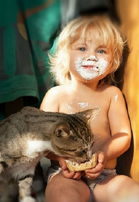 Cute kid and cat sharing some food together.