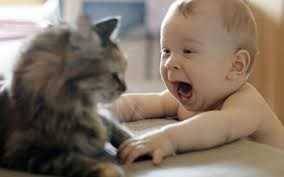cute pic of baby and kitten smiling at each other.
