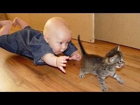 Funny picture of a baby on the floor trying to catch the kitten.