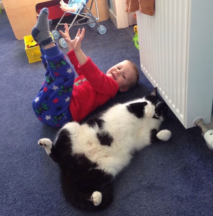 Funny picture of a cat and a kid not doing very good morning workouts.