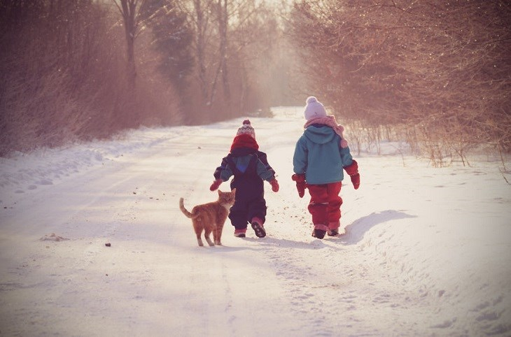 Cute picture of two kids walking in the snow along with their cat.