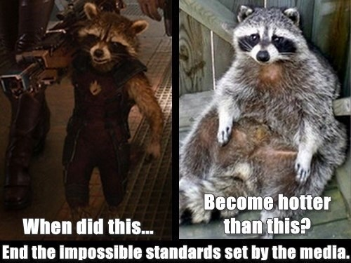 Funny pictures of raccoon and Rocky Raccoon side-by-side making fun of people who accuse the media of manipulating body image issues.