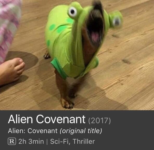 Image on meme reads 'Alien Covenant' but the photo is actually of a dog in an alien costume.