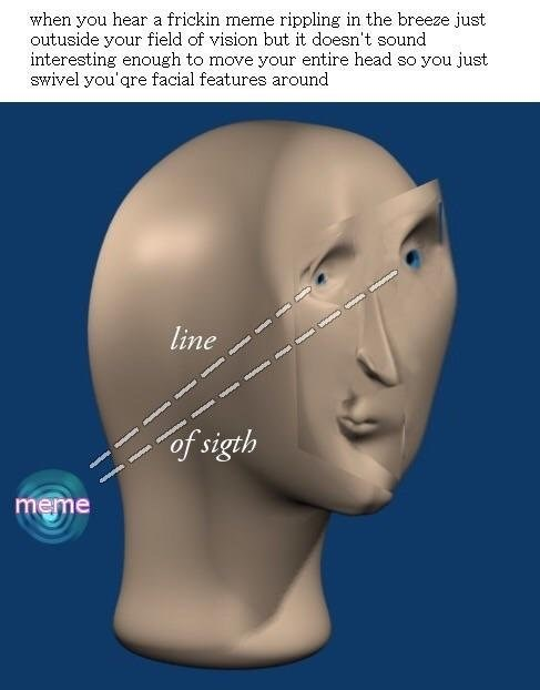 Face - when you hear a frickin meme rippling in the breeze just outuside your field of vision but it doesn't sound interesting enough to move your entire head so you just swivel you'qre facial features around line mne of sigth meme