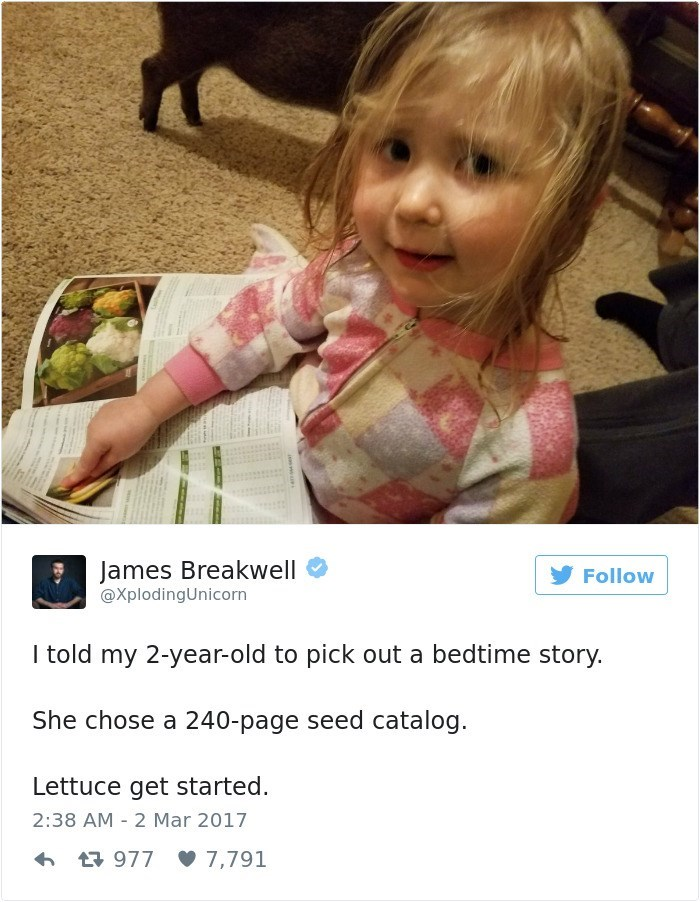 Child - James Breakwell @XplodingUnicorn Follow I told my 2-year-old to pick out a bedtime story. She chose a 240-page seed catalog Lettuce get started 2:38 AM 2 Mar 2017 t977 7,791