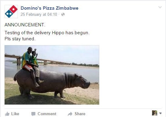 Organism - Domino's Pizza Zimbabwe 25 February at 04:10 ANNOUNCEMENT Testing of the delivery Hippo has begun Pls stay tuned Like Comment Share