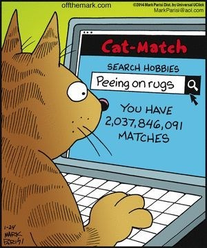 Funny web comic about a cat searching online for other cats with similar interests such as peeing on rugs.