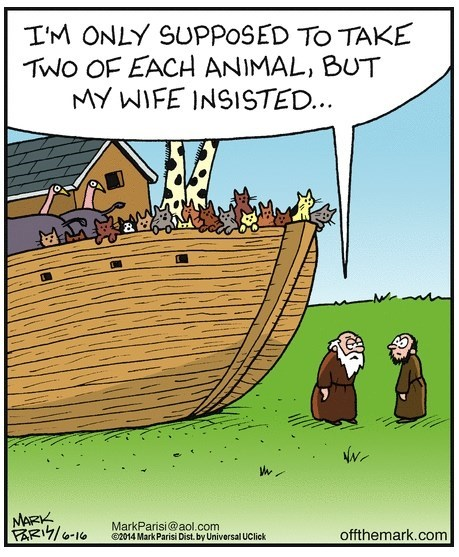 animation noahs ark Cats funny - 9031493376