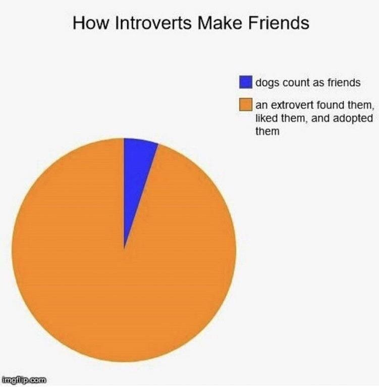 Pie chart showing how introverts make friends, being adopted by extroverts or by hanging out with dogs.