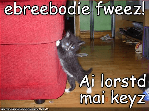 Funny cat meme of a kitten that is having a panic attack after losing his keys.