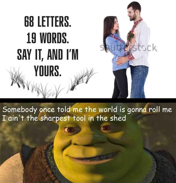 Romantic and funny meme that suggests the lyrics to Smash Mouth's All Star will get you the girl or lead to love.