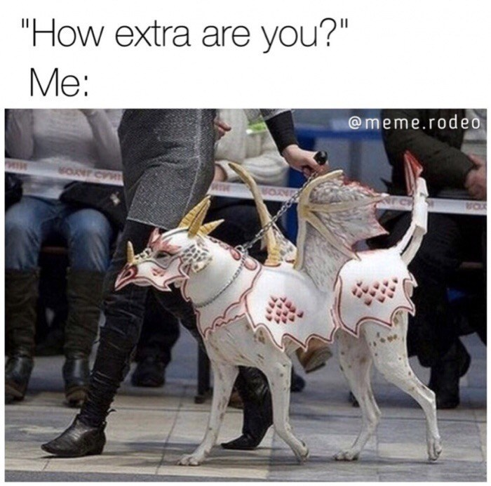 Funny meme about being extra - Dog wearing dragon outfit.