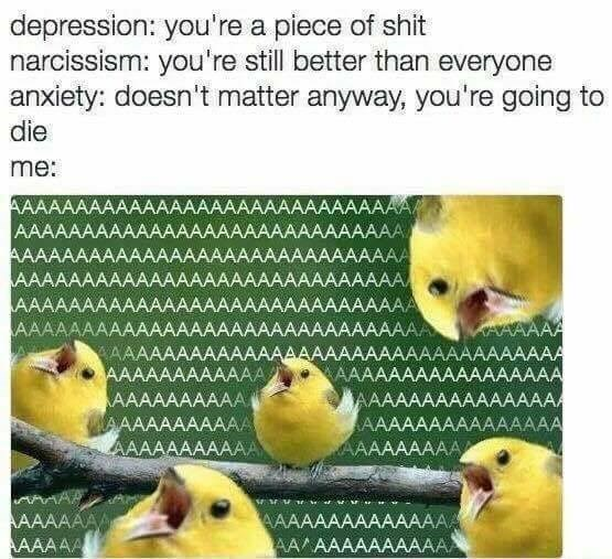 Funny meme regarding anxiety and narcissism and the inevitability of death.