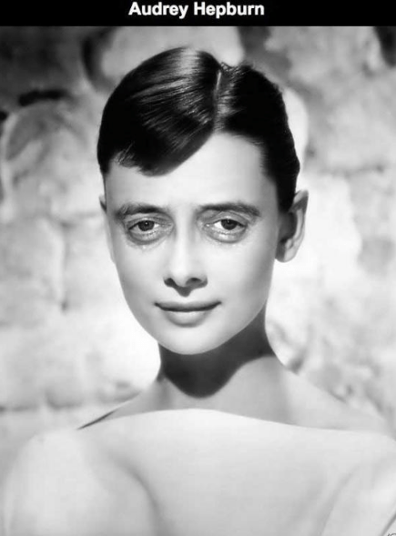 Steve Buscemi's face photoshopped on Audrey Hepburn.