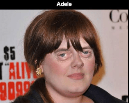 Steve Buscemi's face photoshopped on Adele.