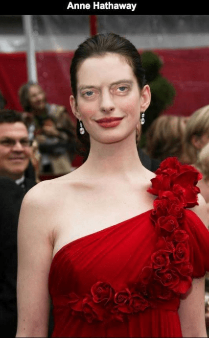 Steve Buscemi's face photoshopped on Anne Hathaway.