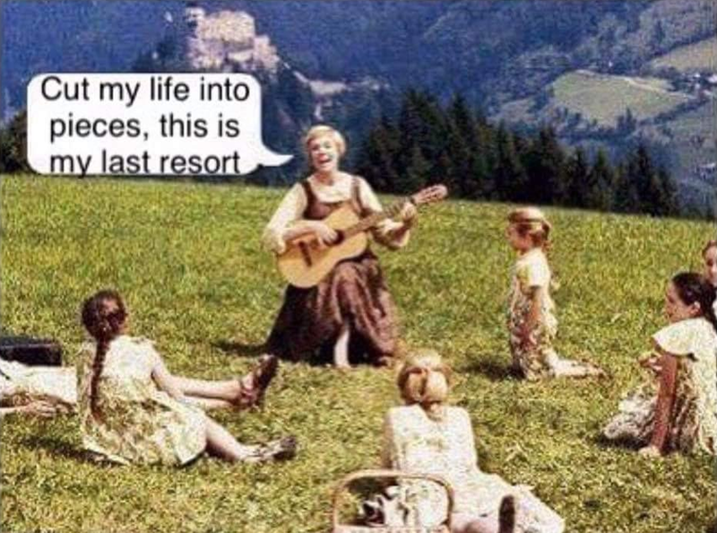 Funny meme the sound of music