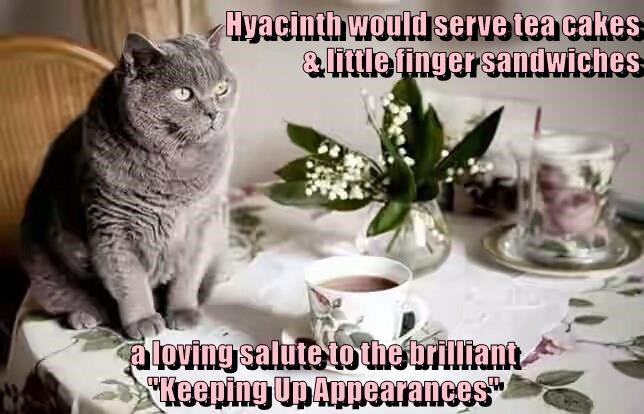 Funny meme of a cat sitting at the table waiting for service.
