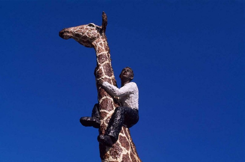 Drunk man climbs over fence in order to ride giraffe, and gets bucked off