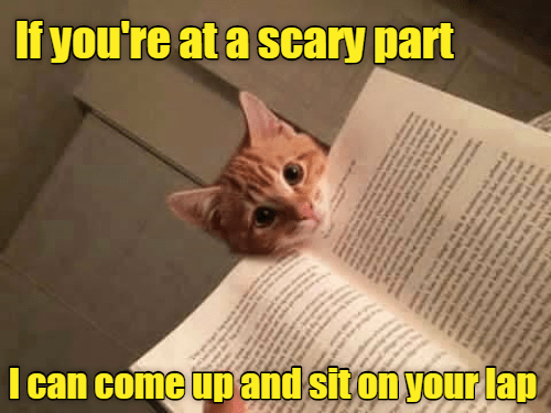 Meme of a funny and sweet cat that is offering to sit on your lap if you are reading a scary part of the book