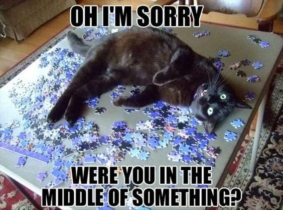 Funny meme of a cat rolling around on that puzzle you have been working on.