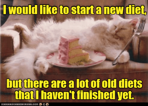 funny cat meme about diets and how a new diet may not be as good as some older diets.