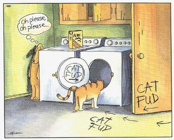 Cartoon - 1985 oh please, oh please.. Ooo ACME CAT FUP CAT FuD FiD
