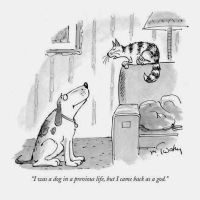 """Cartoon - """"Iwas a dog in a previous life, but I came back as a god."""