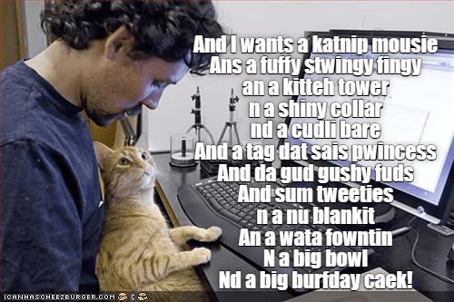 Funny meme of cat at a computer listing off his birthday list.