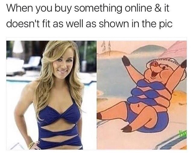 When you buy something online and it doesn't fit the way it did in the pic, funny meme with lauren conrad and porky the pig.