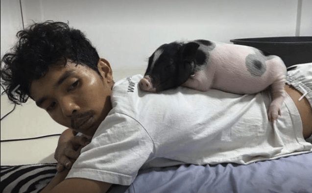 a guy with his tea cup pig