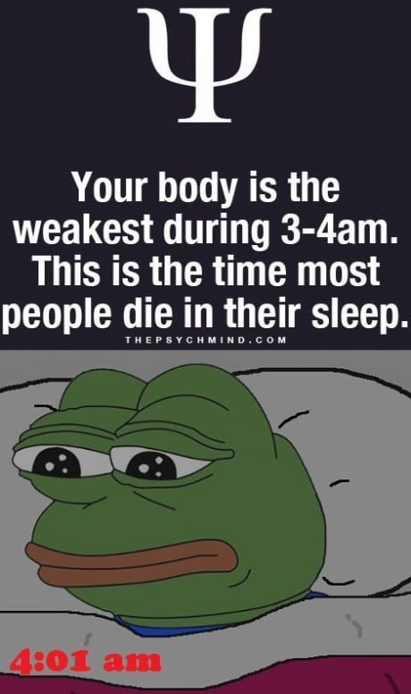 Pepe the Frog reading about how most people die in their sleep between 3 am and 4am and he is reading it at that hour.