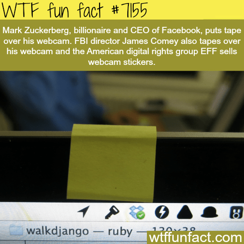 Text - WTF fun fact #155 Mark Zuckerberg, billionaire and CEO of Facebook, puts tape over his webcam. FBI director James Comey also tapes over his webcam and the American digital rights group EFF sells webcam stickers. walkdjango ruby 1202 O wtffunfact.com