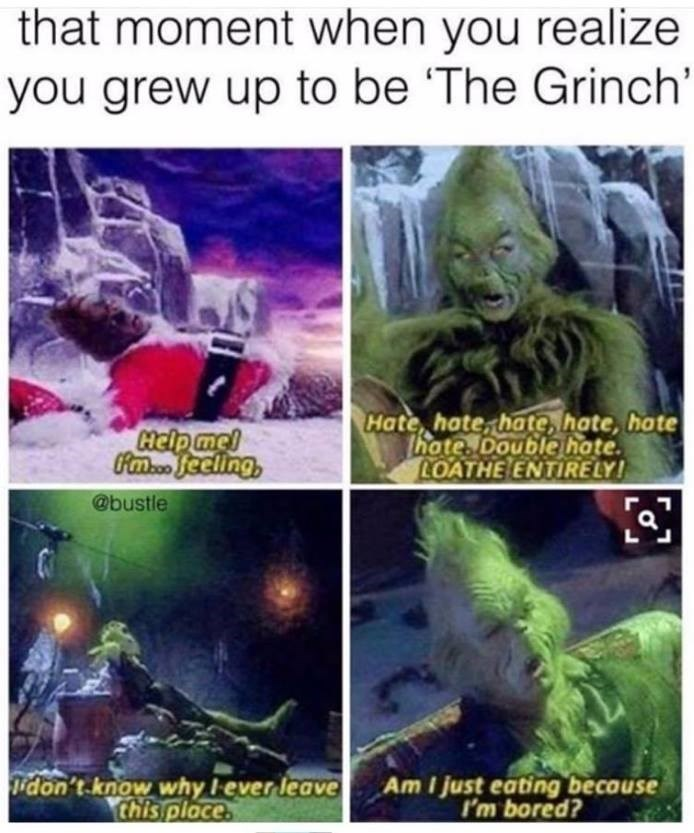 the Grinch Memes funny - 9033048064