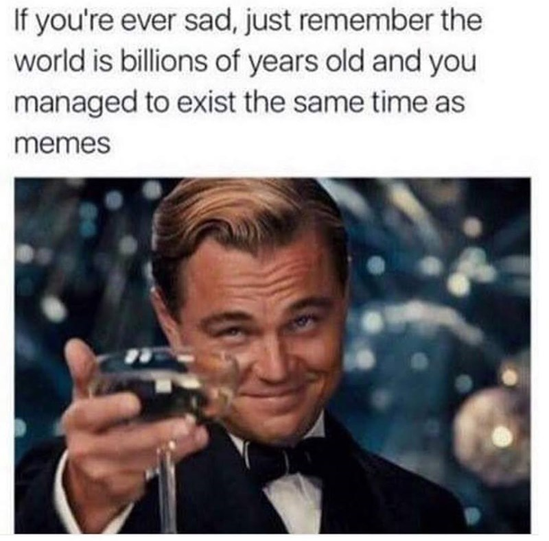 Photo of Leonardo DiCaprio as Jay Gatsby, cheersing you because you are lucky to live at the same time as memes.