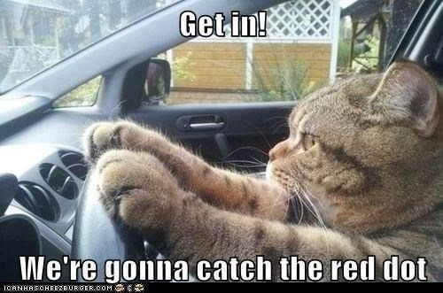Funny meme of ac at in the car saying to get in because we gonna catch the red dot.