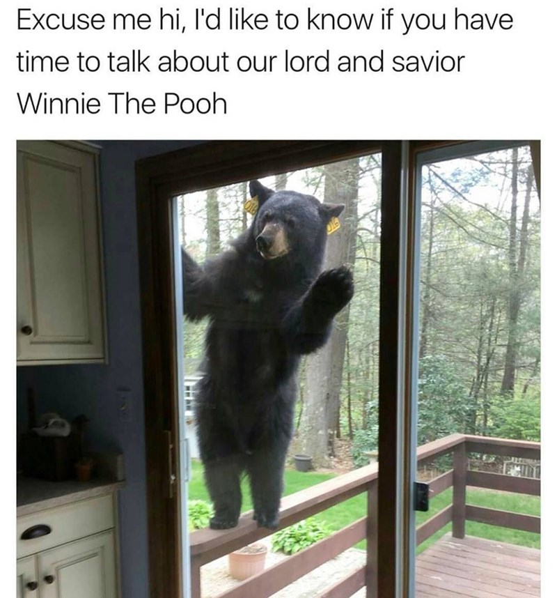 Funny meme of a bear knocking on your door like a pushy Christian missionary but about Winnie The Pooh as their lord and savior.