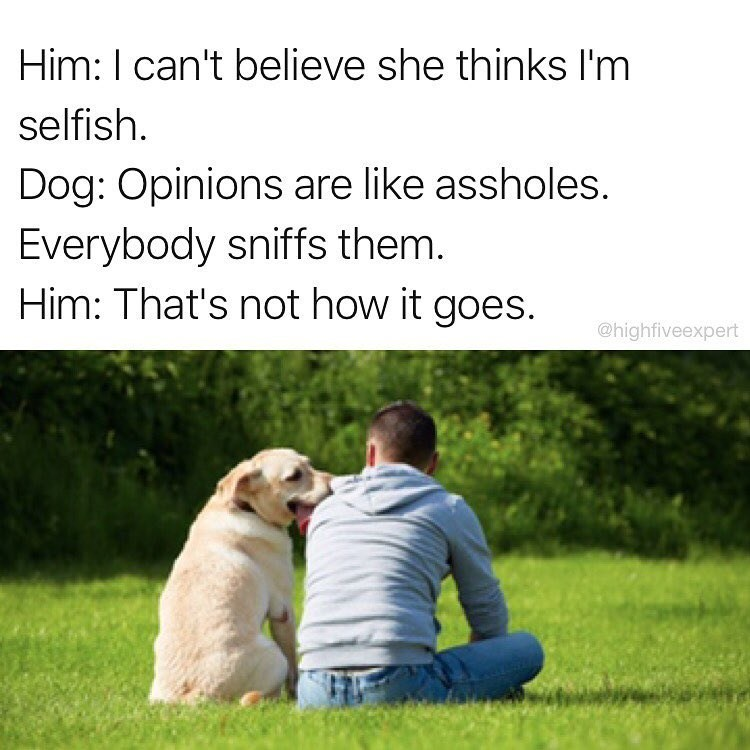 Funny meme where man is talking to dog about his relationship problems, dog compares opinions to assholes because everyone sniffs them. Man says that's not how the saying goes. Cute doggo.