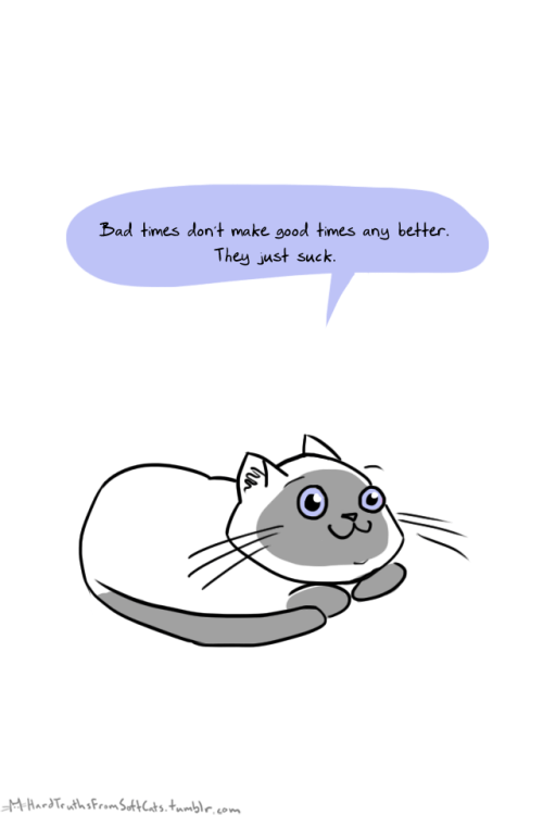 Dark meme of a cat explaining how bad times don't do anything for anyone but suck.
