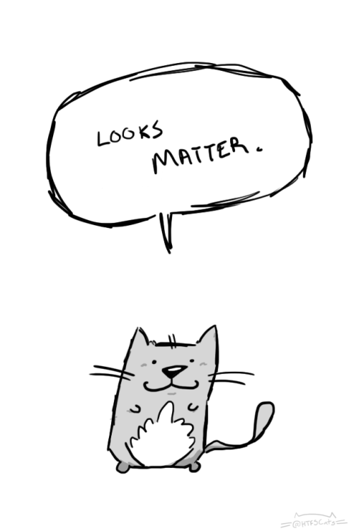 Funny cat meme about the harsh reality that looks do matter.