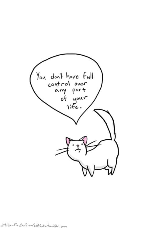 Cat meme depressing you with advice on how you have no full control over any part of your life.