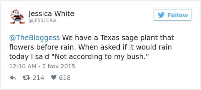 Funny fail of when you predict weather using your bush.