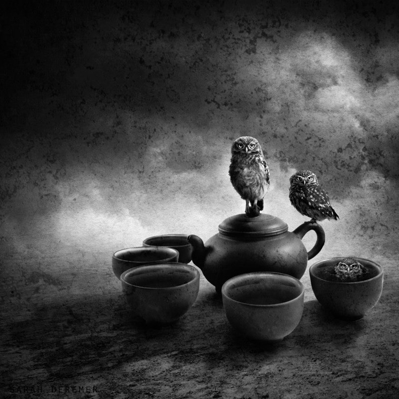 Still life photography - SARAH DEREMER